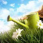 Art floral, jardinage et espaces verts